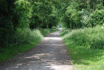 Path along the old railway line