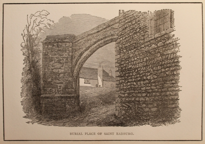 The buttress c1859